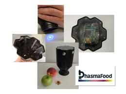 The PhasmaFOOD project: a portable device to monitor food quality and safety in a non-invasive way