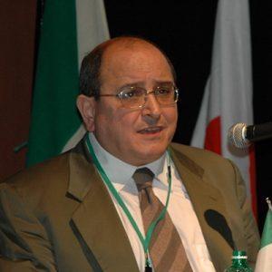 <p>Mario Malinconico</p>