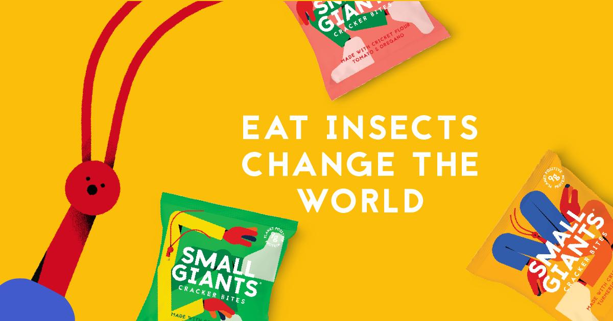 Eat Insects Change the World